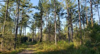 PEARL RIVER COUNTY, MS (1,798 acres) SOLD