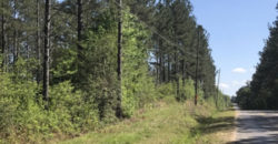 PEARL RIVER COUNTY, MS (317 acres)