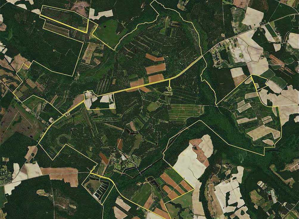 WILLIAMSBURG COUNTY, SC (3,680 acres)