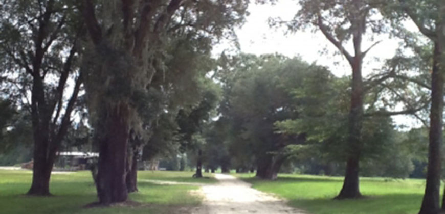 JACKSON COUNTY, FL (377 acres)